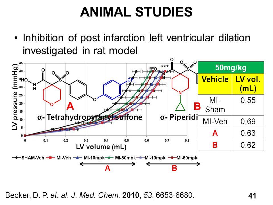ANIMAL STUDIES Inhibition of post infarction left ventricular dilation investigated in rat model. LV volume (mL)