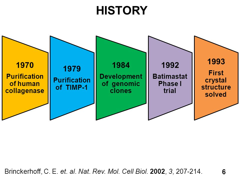 HISTORY 1970 1979 1984 1992 1993 Purification of human collagenase