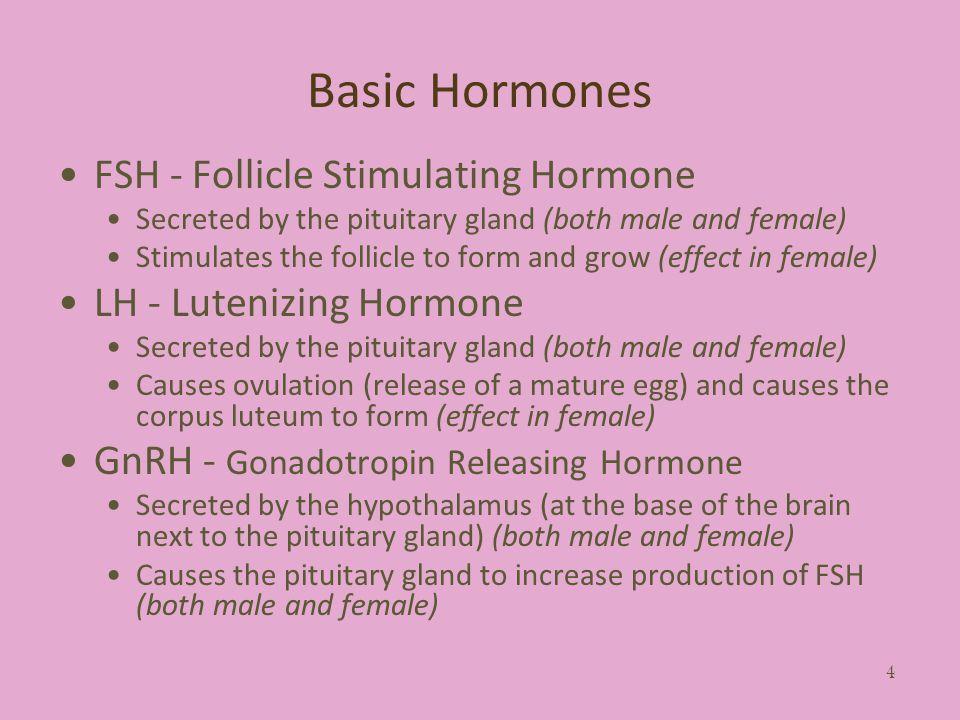 Basic Hormones FSH - Follicle Stimulating Hormone