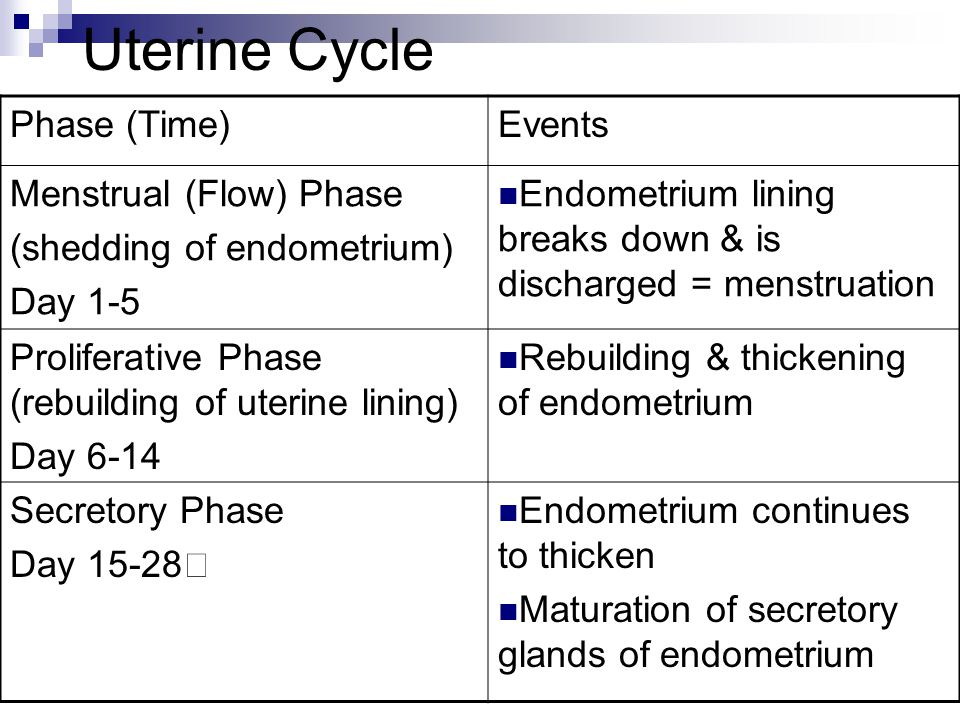 Uterine Cycle Phase (Time) Events Menstrual (Flow) Phase