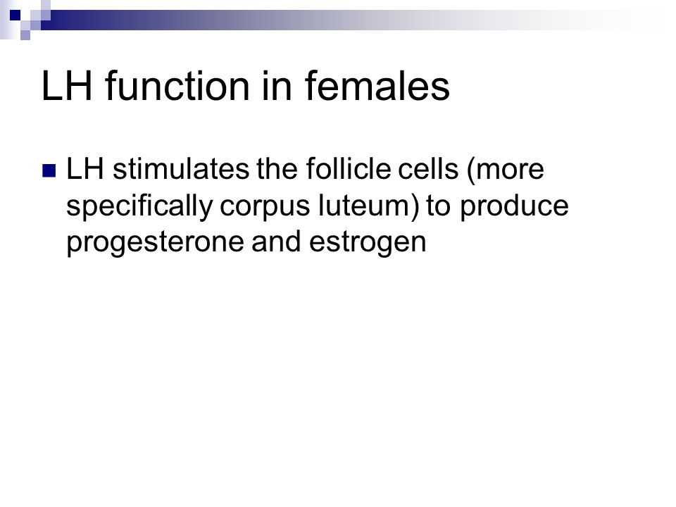 LH function in females LH stimulates the follicle cells (more specifically corpus luteum) to produce progesterone and estrogen.