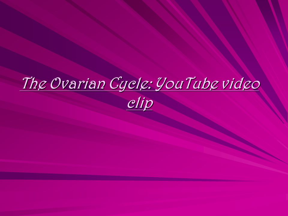 The Ovarian Cycle: YouTube video clip