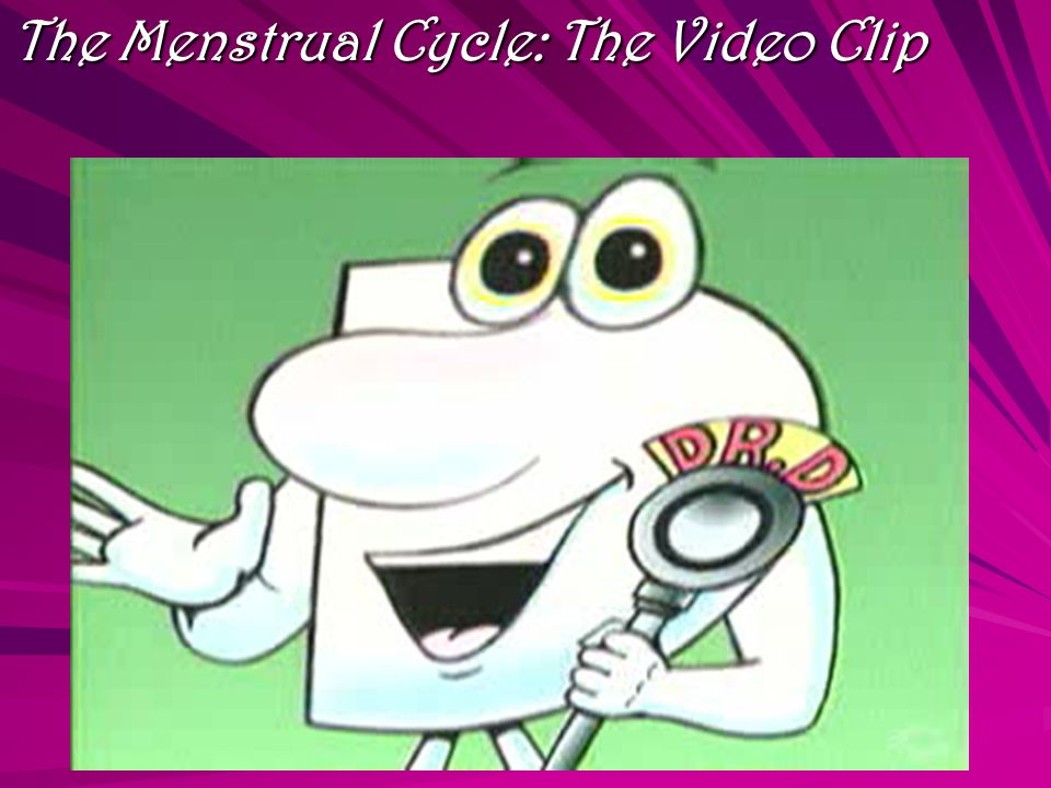 The Menstrual Cycle: The Video Clip