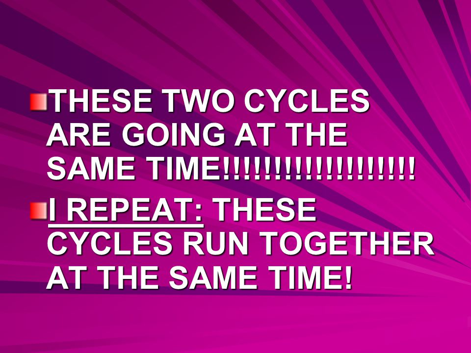 THESE TWO CYCLES ARE GOING AT THE SAME TIME!!!!!!!!!!!!!!!!!!!