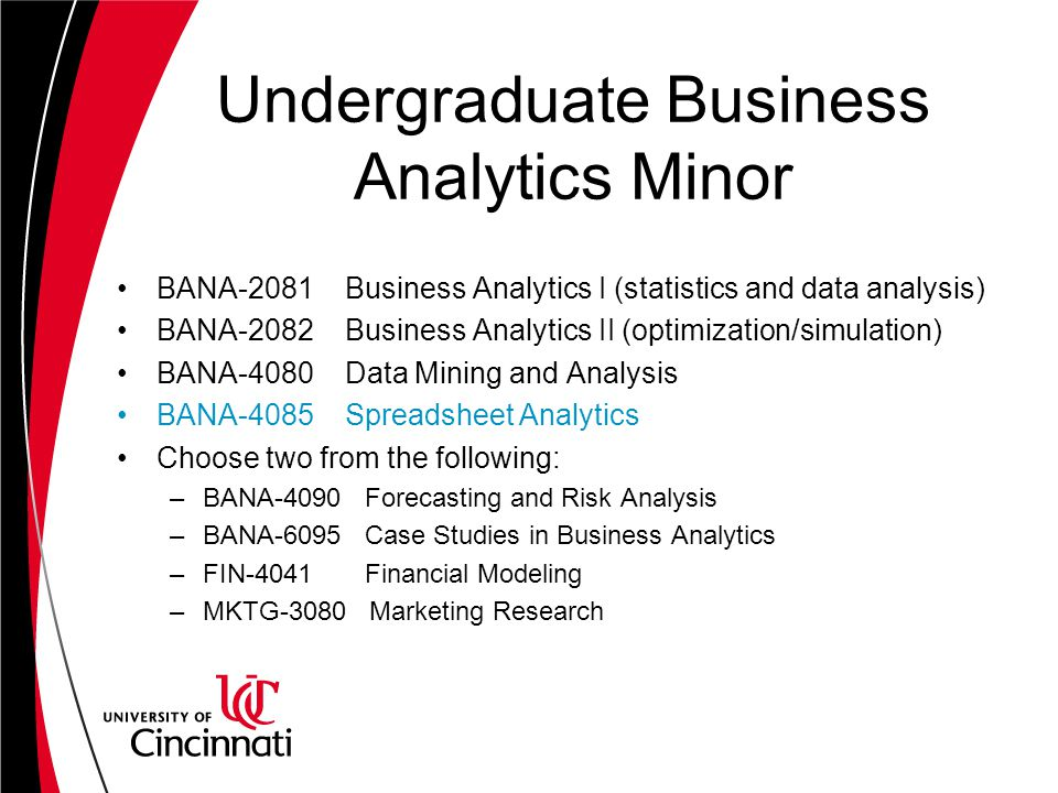 Undergraduate Business Analytics Minor