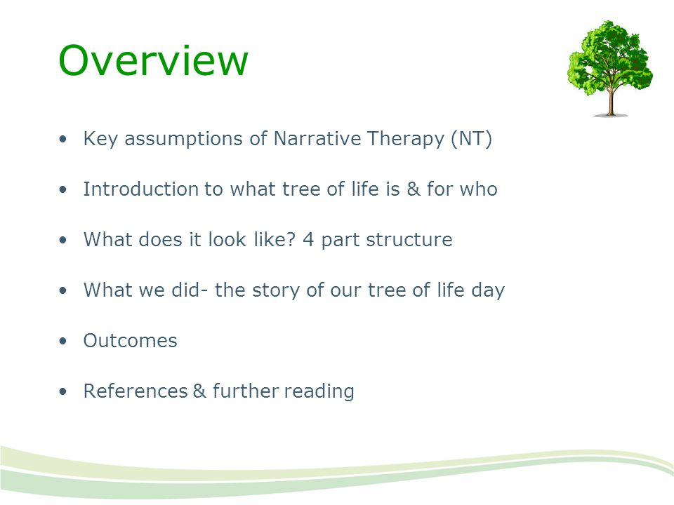 Overview Key assumptions of Narrative Therapy (NT)