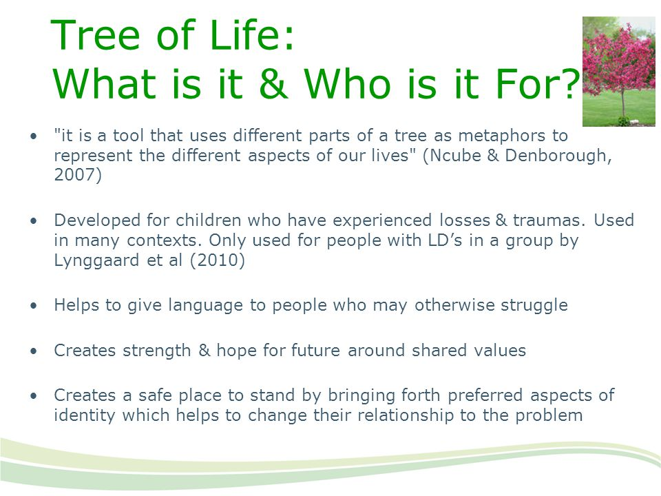 Tree of Life: What is it & Who is it For