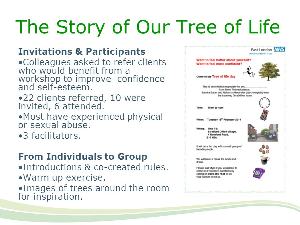 The Story of Our Tree of Life