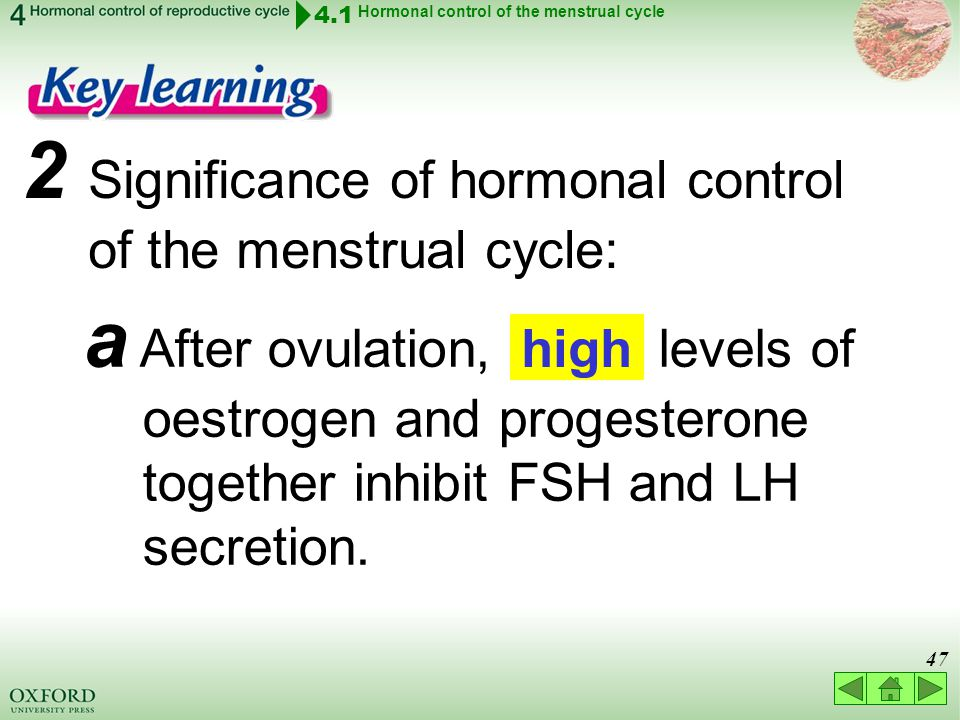 Think about… 4.1 Hormonal control of the menstrual cycle 4 ...