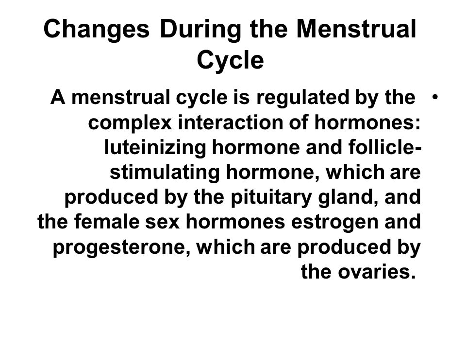 Changes During the Menstrual Cycle