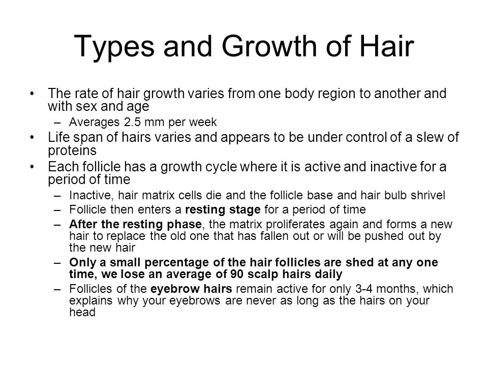 Types and Growth of Hair