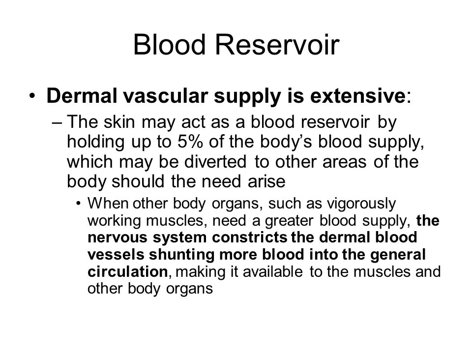 Blood Reservoir Dermal vascular supply is extensive: