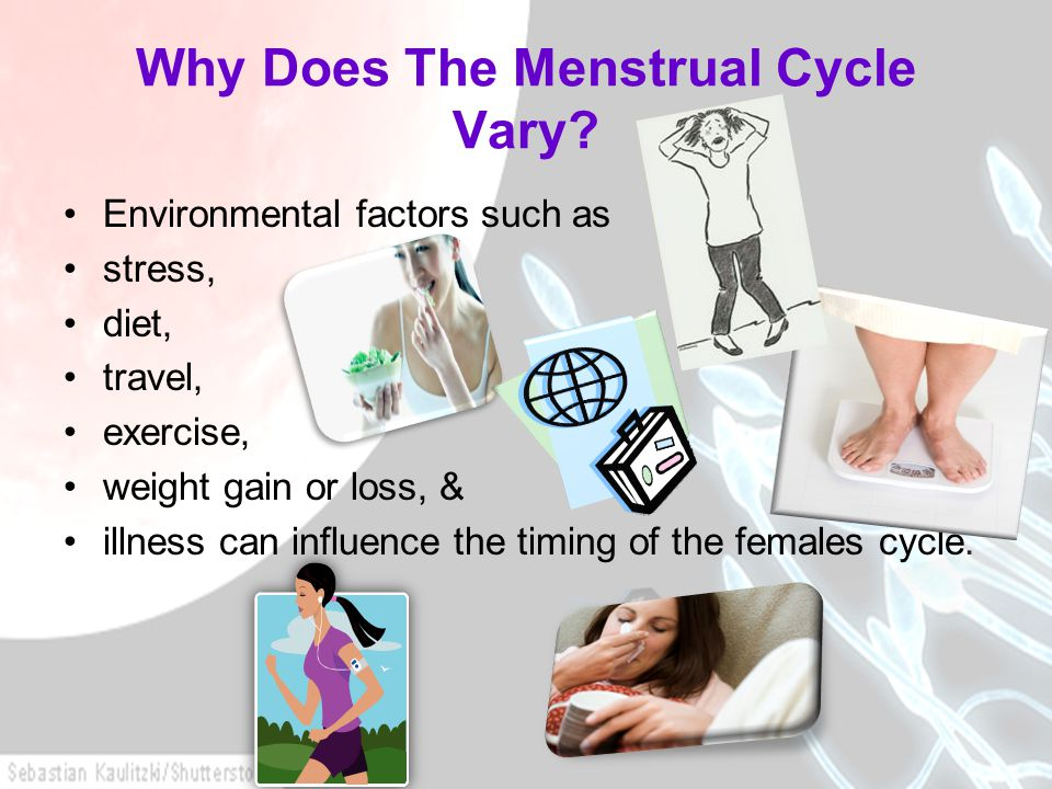 Why Does The Menstrual Cycle Vary