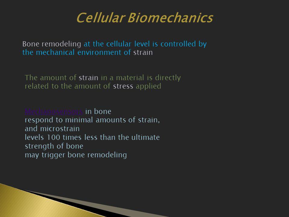 Cellular Biomechanics
