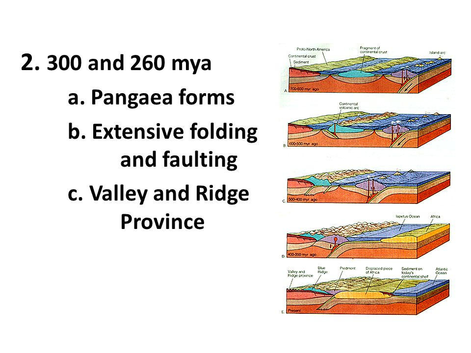 2. 300 and 260 mya a. Pangaea forms b. Extensive folding and faulting