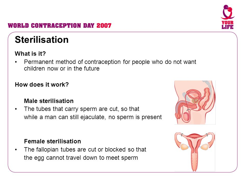 Sterilisation What is it