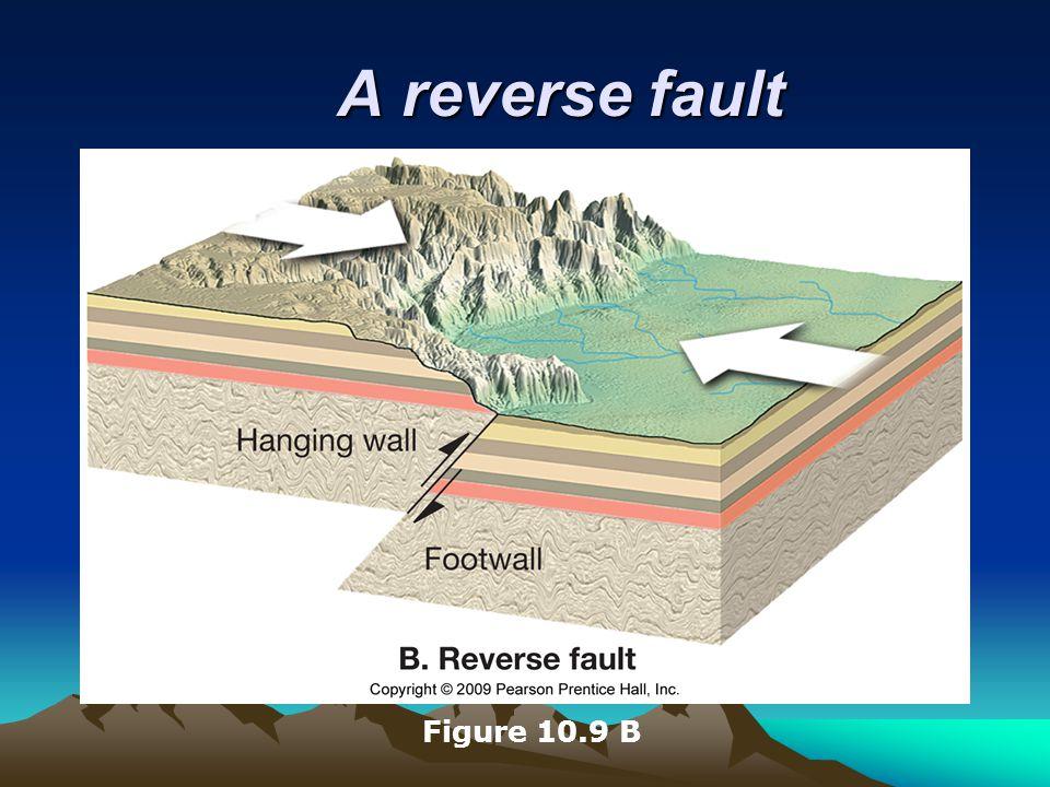 A reverse fault Figure 10.9 B