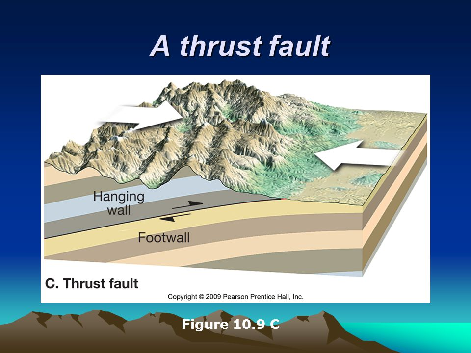 A thrust fault Figure 10.9 C