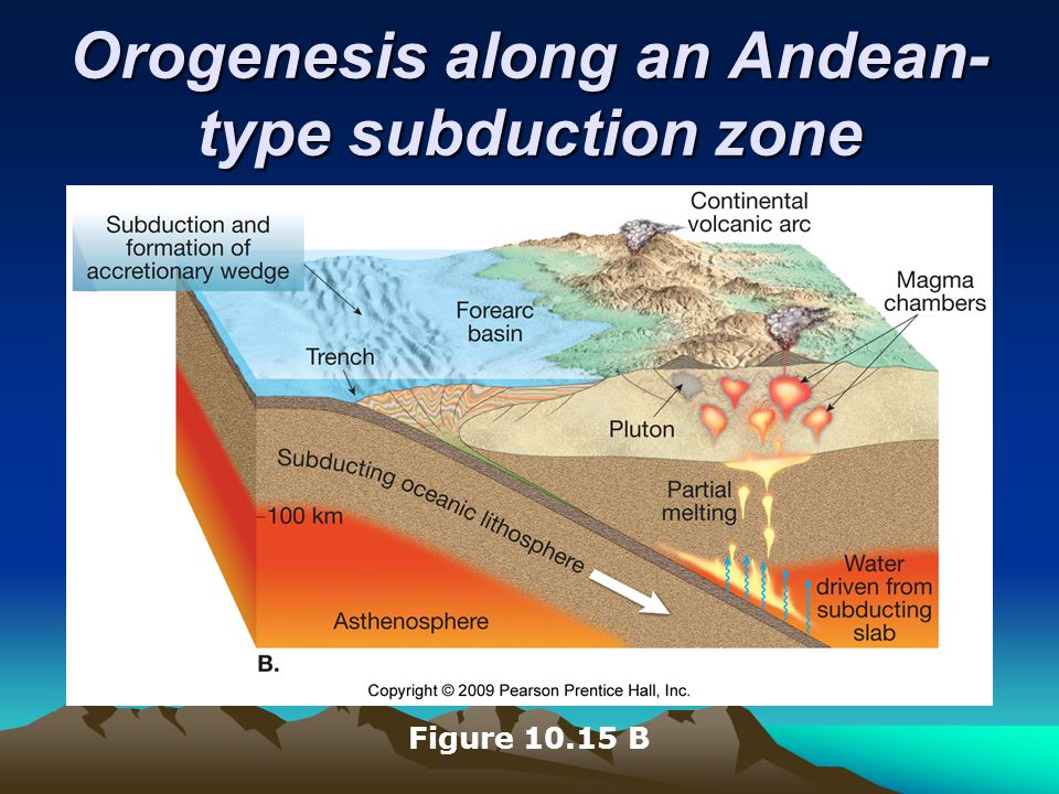 Orogenesis along an Andean-type subduction zone
