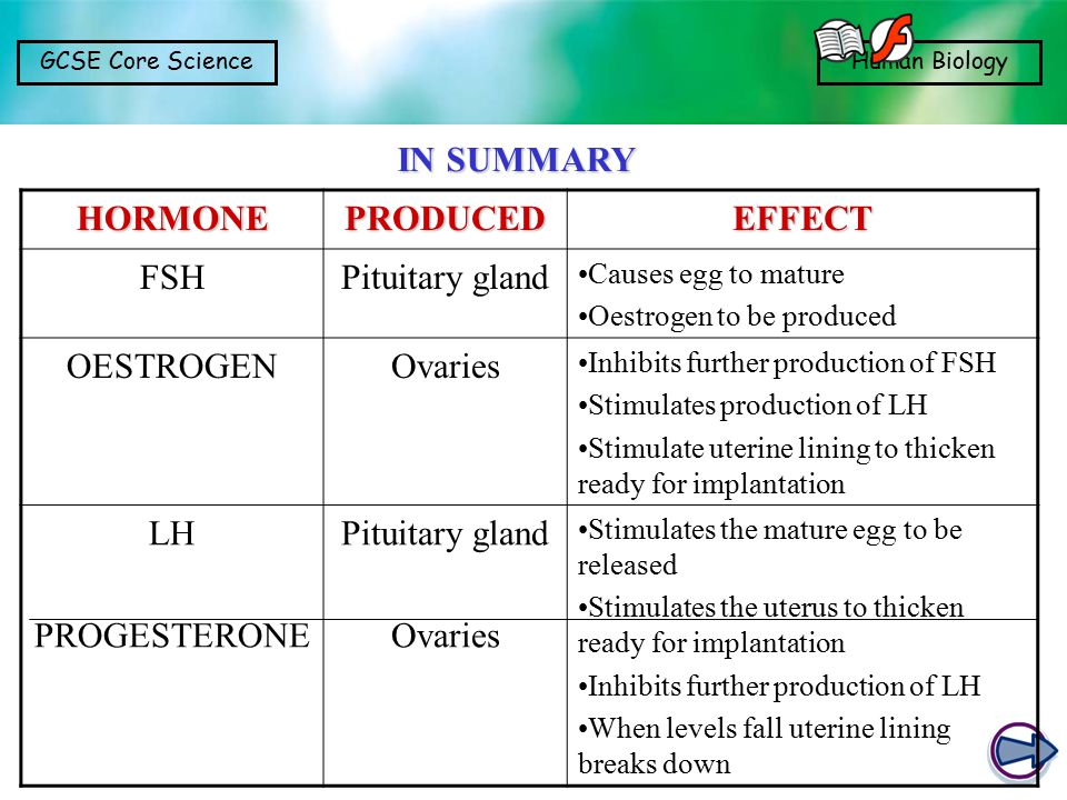 IN SUMMARY HORMONE PRODUCED EFFECT