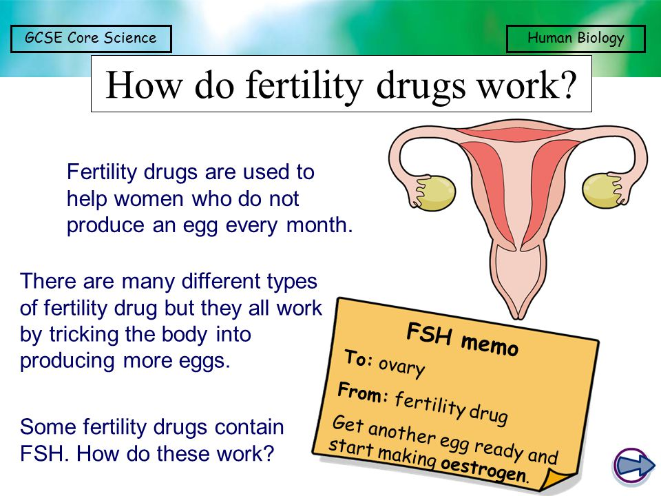 How do fertility drugs work