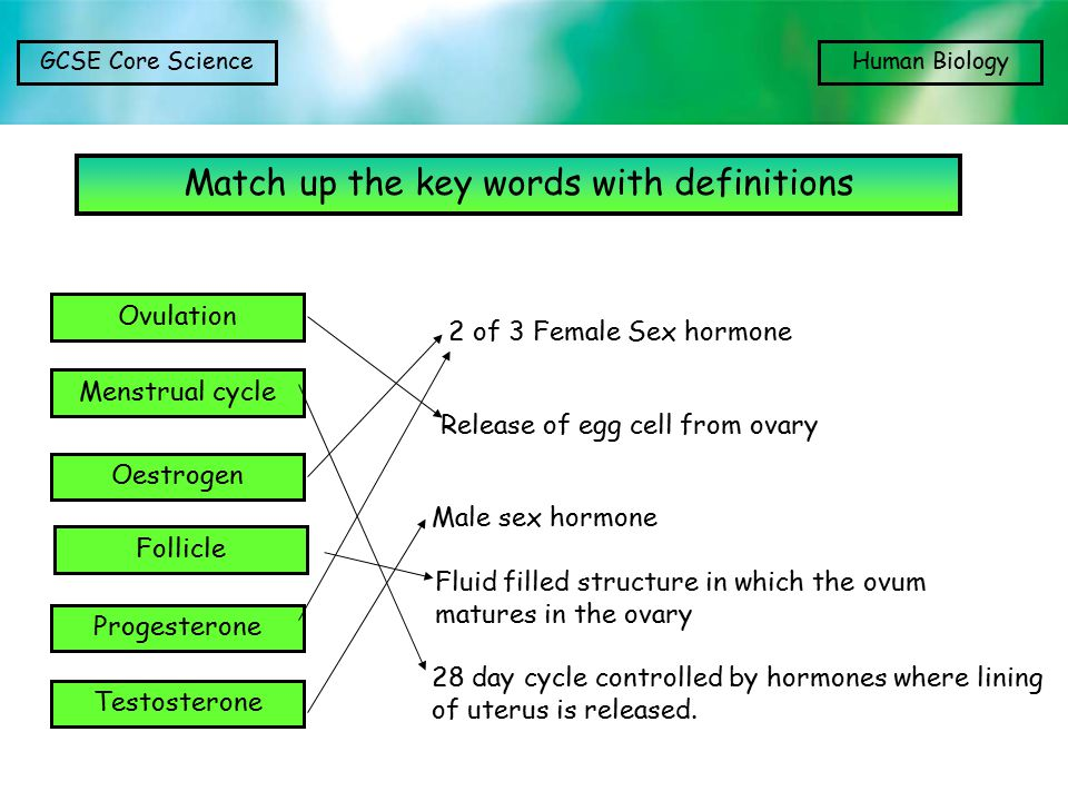 Match up the key words with definitions