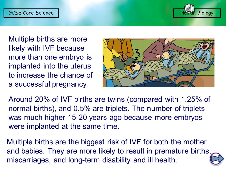 Multiple births are more likely with IVF because more than one embryo is implanted into the uterus to increase the chance of a successful pregnancy.