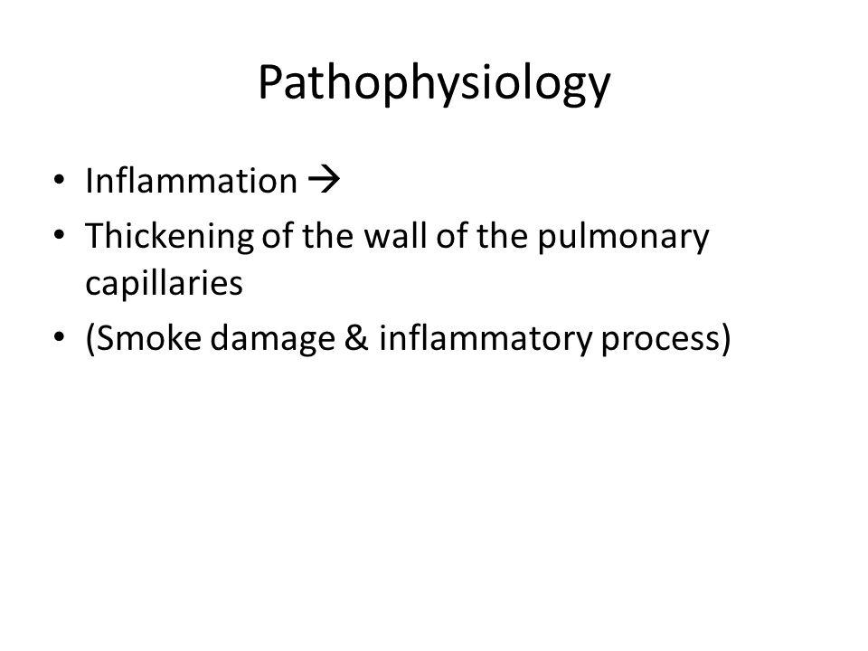 Pathophysiology Inflammation 