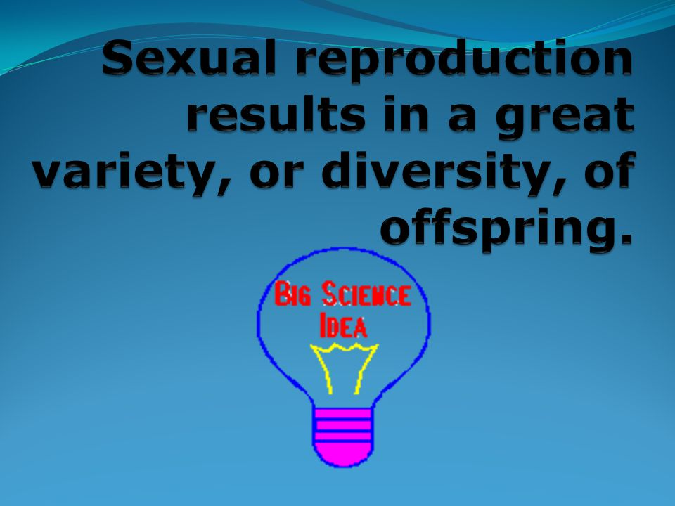 Sexual reproduction results in a great variety, or diversity, of offspring.