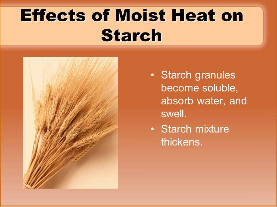 Effects of Moist Heat on Starch