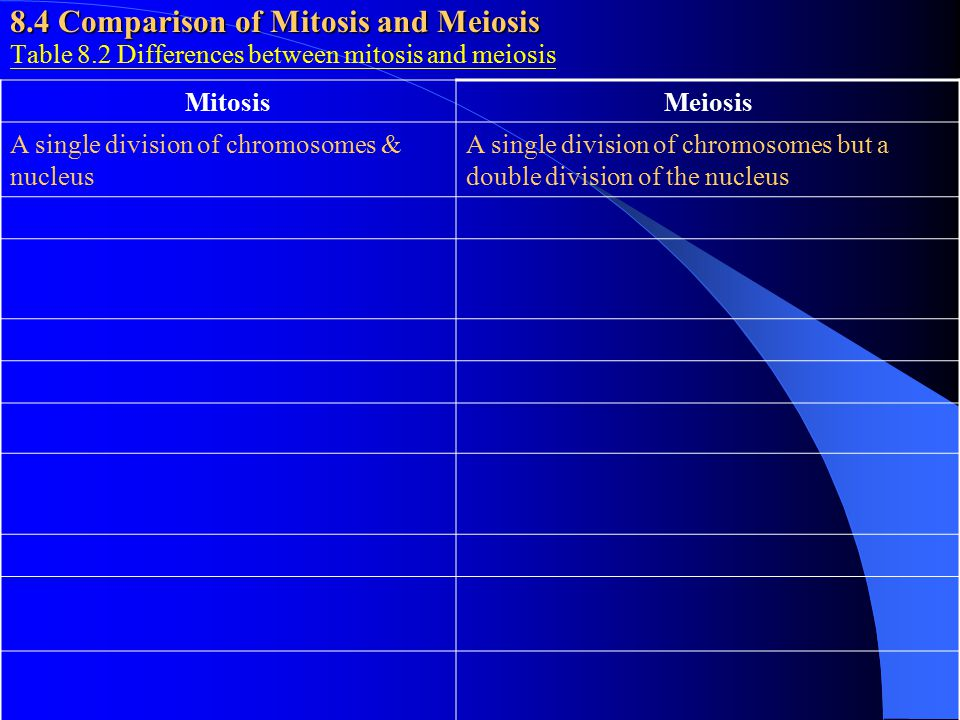 8.4 Comparison of Mitosis and Meiosis