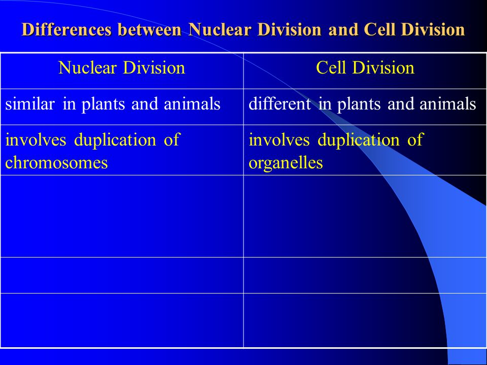 Differences between Nuclear Division and Cell Division