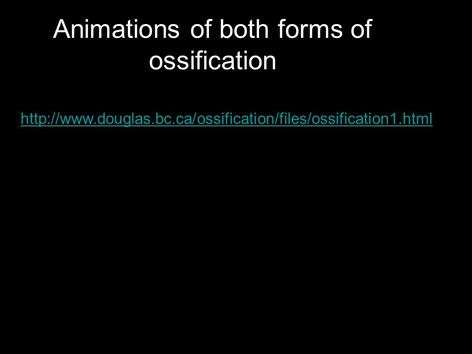 Animations of both forms of ossification