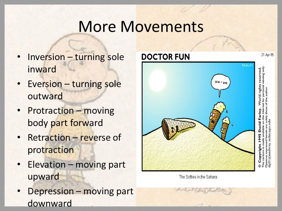 More Movements Inversion – turning sole inward