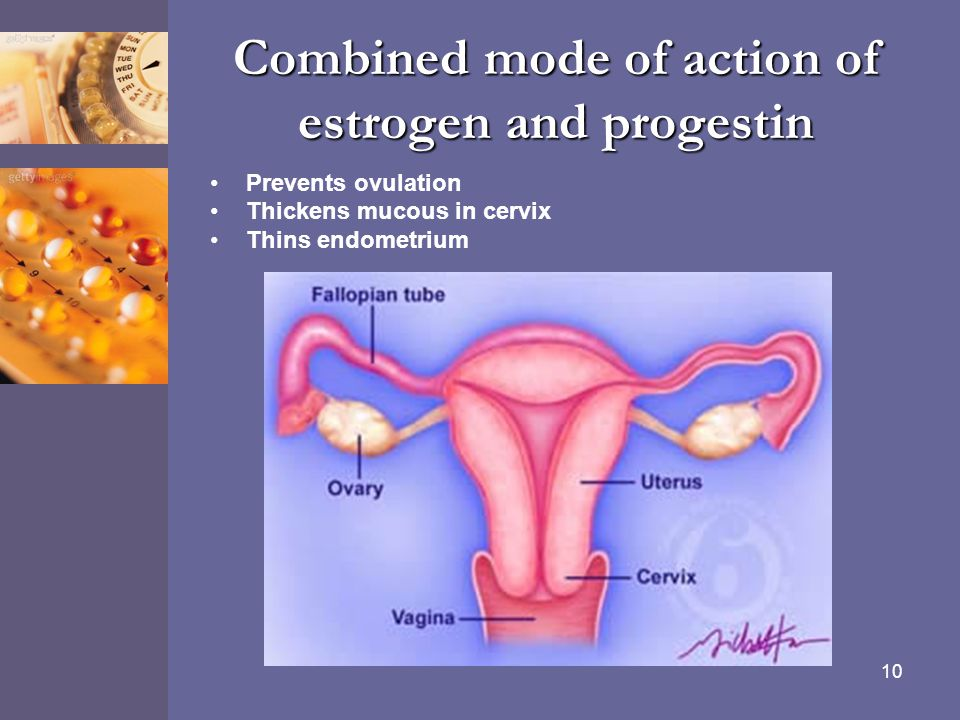 Combined mode of action of estrogen and progestin