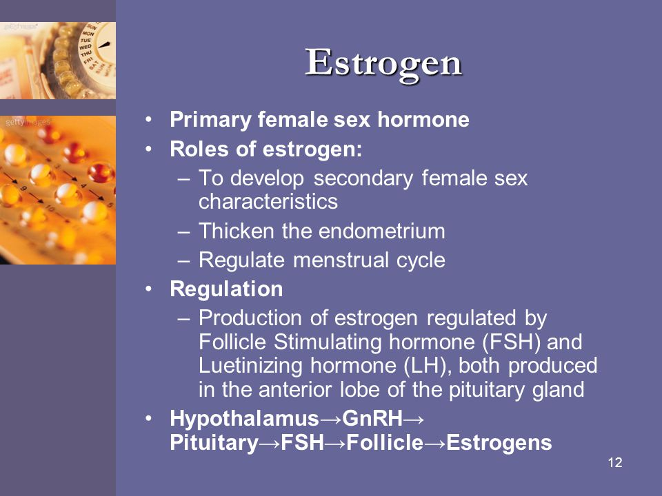 Estrogen Primary female sex hormone Roles of estrogen: