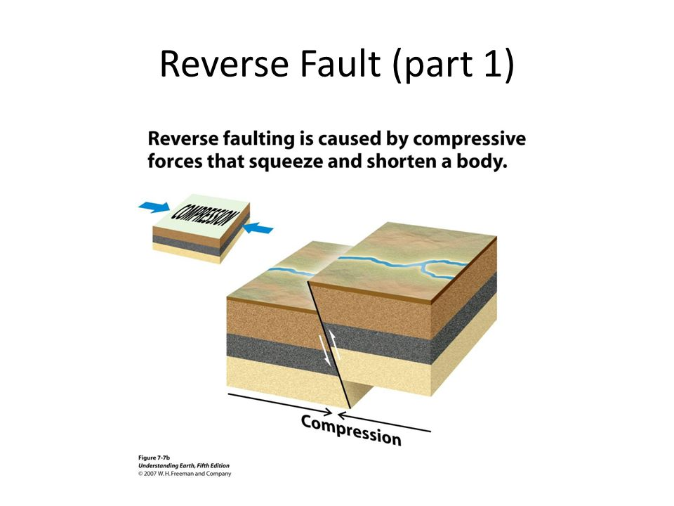 Reverse Fault (part 1)