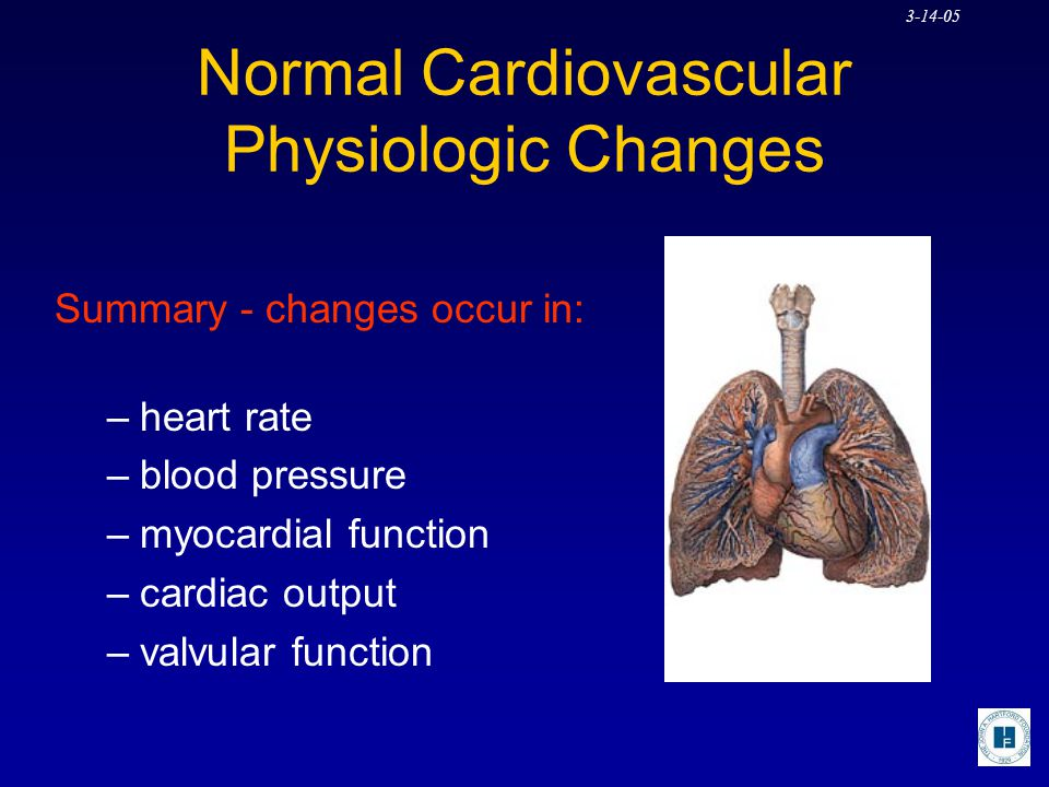 Normal Cardiovascular Physiologic Changes