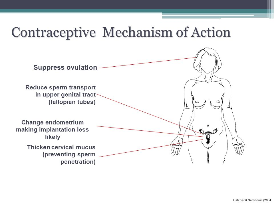 Contraceptive Mechanism of Action