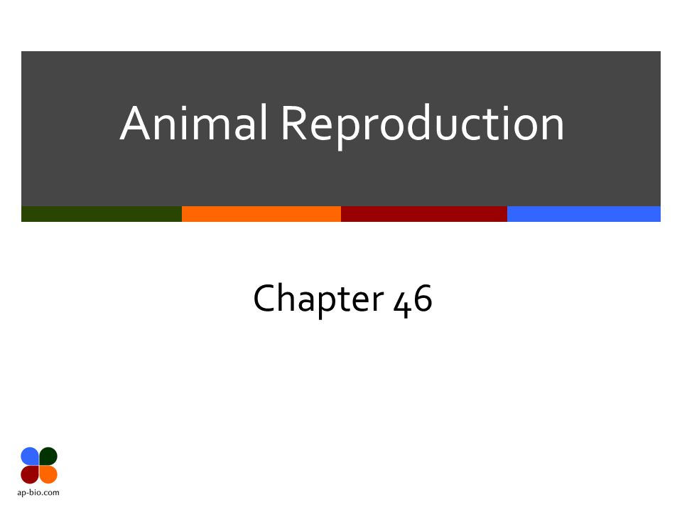 Animal Reproduction Chapter 46