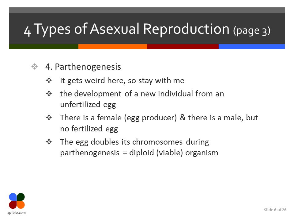 4 Types of Asexual Reproduction (page 3)