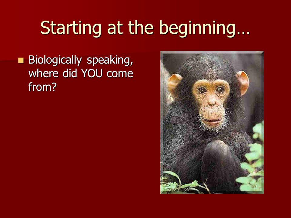 Starting at the beginning…