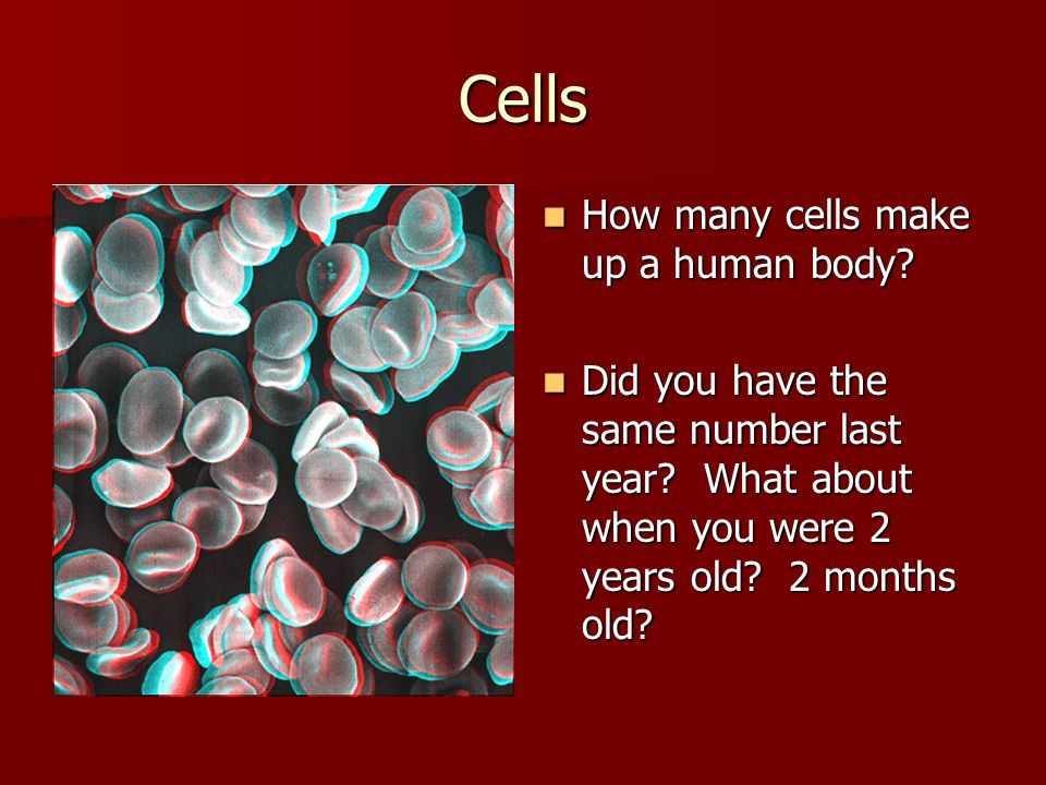 Cells How many cells make up a human body