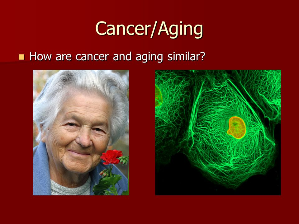 Cancer/Aging How are cancer and aging similar