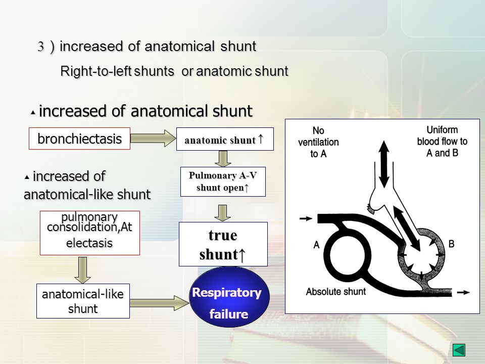 Pulmonary A-V shunt open↑