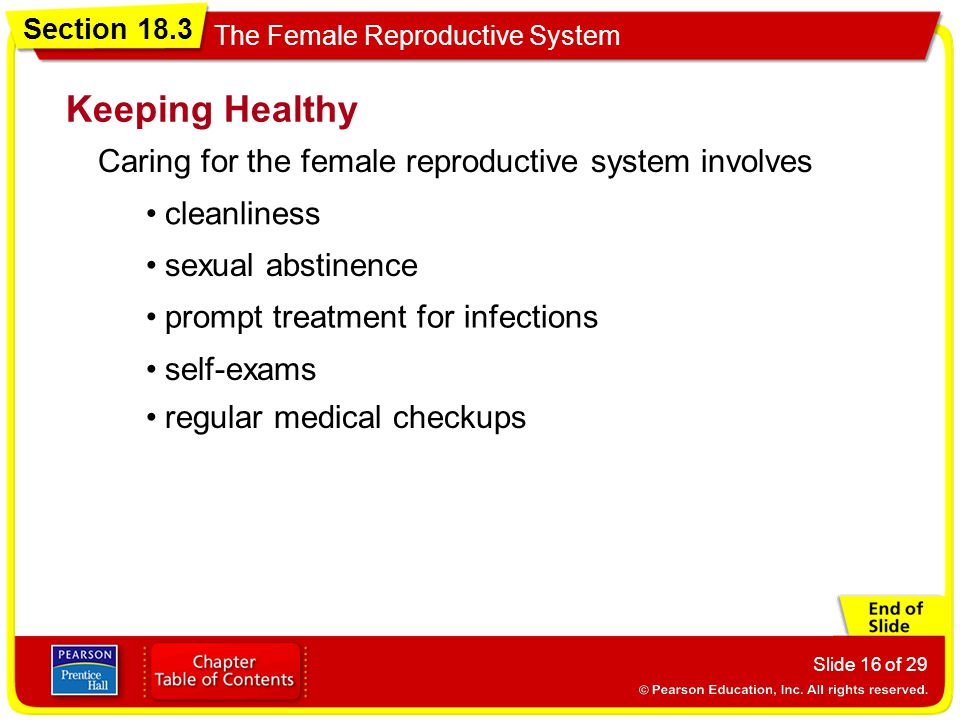 Keeping Healthy Caring for the female reproductive system involves