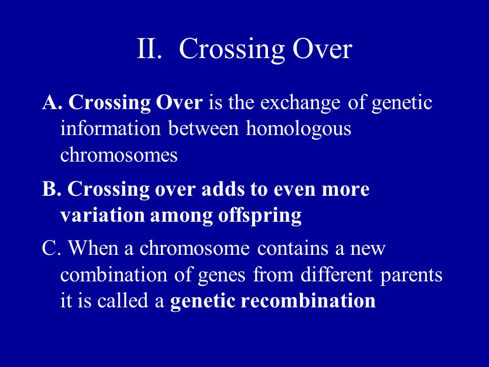 II. Crossing Over A. Crossing Over is the exchange of genetic information between homologous chromosomes.