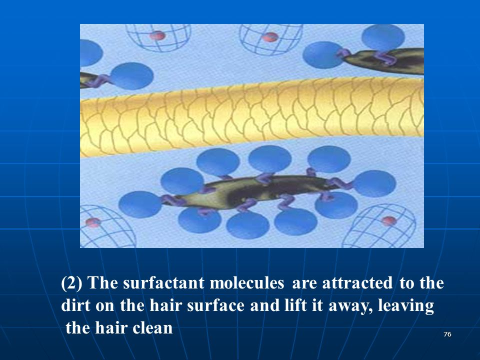 (2) The surfactant molecules are attracted to the