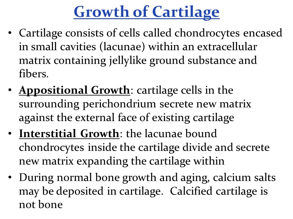 Growth of Cartilage