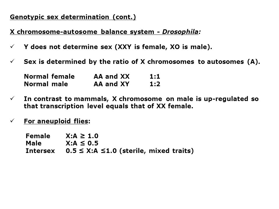Genotypic sex determination (cont.)